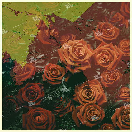album art with roses