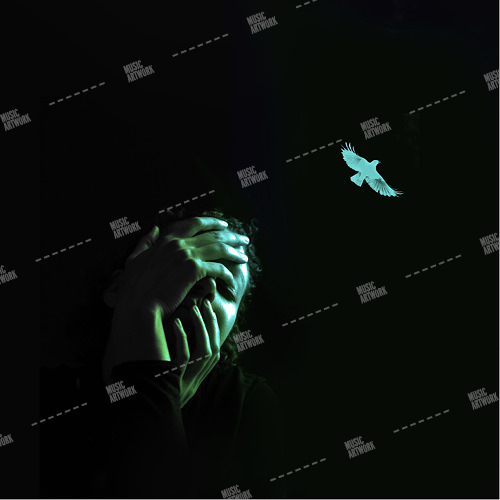 dark album artwork with girl and bird