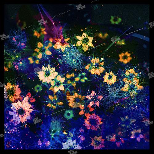 album art with flowers in the dark