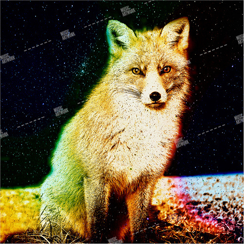 Album cover showing a fox in the night.
