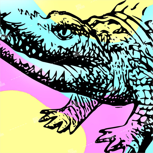 album artwork with a color crocodile drawing