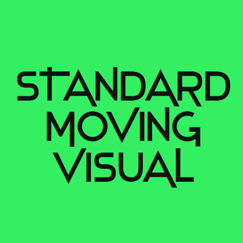 Standard moving visual for spotify canvas design
