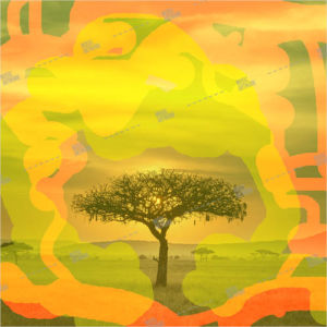 Album art with a tree