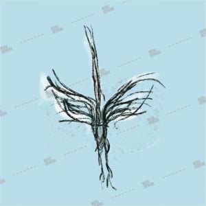 Album artwork design with bird