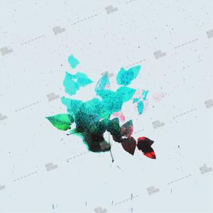 Album artwork design with flower