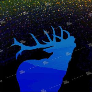 album ar with deer