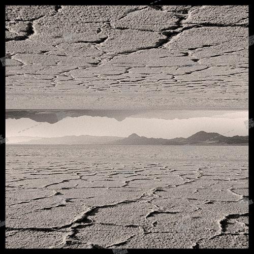artwork with desert