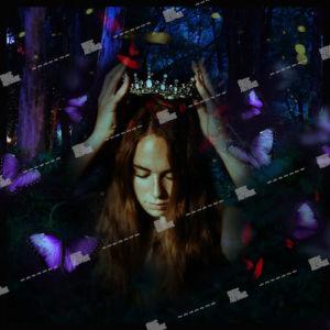 fairy wearing a crown