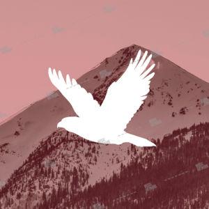 eagle and mountain