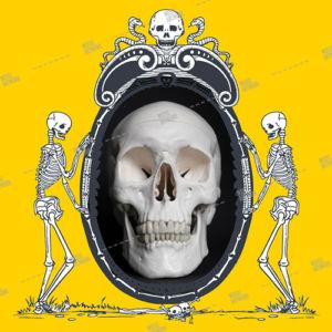 skull and skeletons