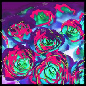 roses album cover